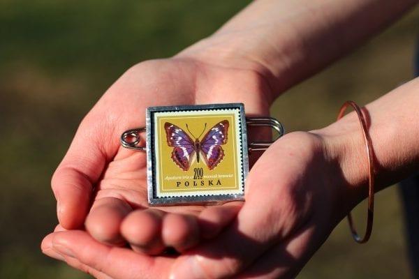 Dzikie Twory - broszka ze znaczkiem pocztowym motyl mieniak tęczowiec